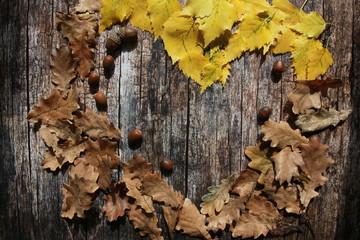 Heart shape frame of fall leaves and acorns on wooden desk. September harvest, thanksgiving concept. Oak, birch leaves, planks, autumn background, copy space