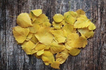 Heart of yellow autumn leaves on wooden desk. Fall foliage, welcome autumn concept.