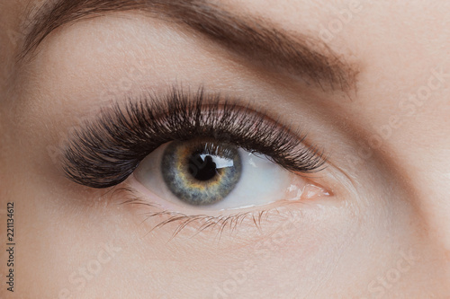 8c0ea1c9bd1 Eyelash extension procedure. Beautiful female eyes with long lashes, closeup