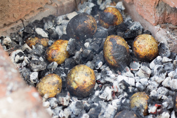 potatoes baked in the coals on the nature