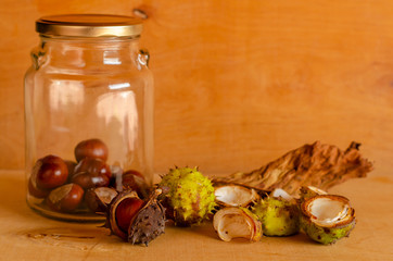 Jar with horse-chestnuts and shells on wooden background. Front view. Copy space