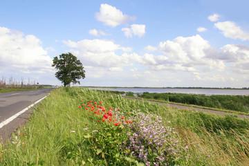 Anfahrt Usedom, Autos, Strasse, Naturschutzgebiet Peenetalmoor