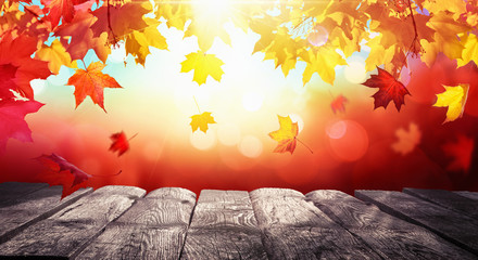 Autumn Colorful Background With Leaves And a Wooden Table In Sunlight