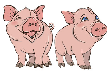 Two cute funny pig vector illustration on white background