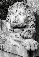 sculpture of a lion on the cemetery