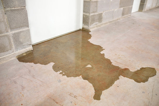 flood in my building