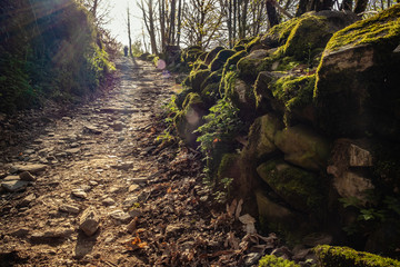 Bierzo Gebirge in Galizien - Anstieg nach La Faba - Jakobsweg Camino Frances
