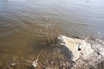 Verschmutzung der Elbe bei Magdeburg