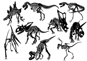 Graphical set of dinosaur skeletons isolated on white background,vector sketch