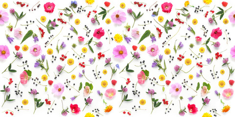 Fototapete - Flowers  flat lay. Seamless pattern from plants, wild flowers and  berries, isolated on white background, top view.