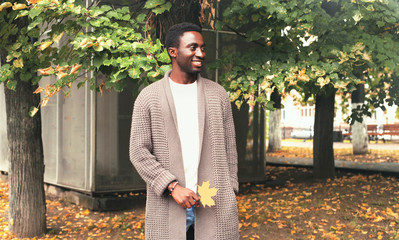 Wall Mural - Fashion smiling african man wearing knitted cardigan holds yellow maple leaves in autumn park