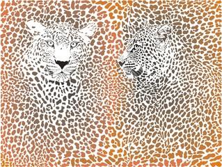 Leopard pattern with head
