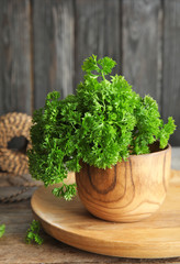 Bowl with fresh green parsley on wooden table