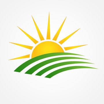 Logo sun with green agriculture cultives swooshes line art id business brand icon