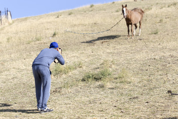 a man takes pictures of horses in pasture