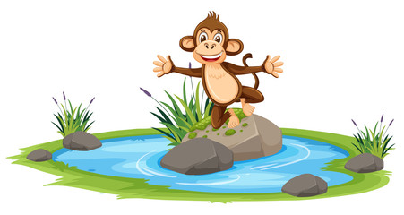 Happy monkey at pond