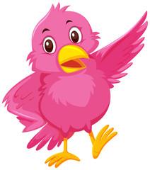 A cute pink bird