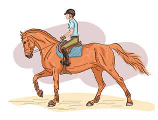 A vector illustration of a rider cantering on a horse.