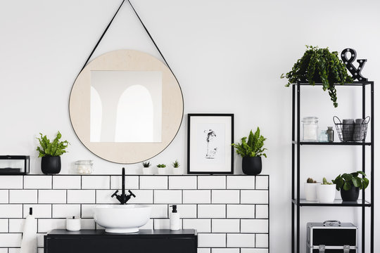 Round mirror and poster between plants in white and black bathroom interior with washbasin. Real photo