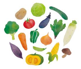 野菜水彩画