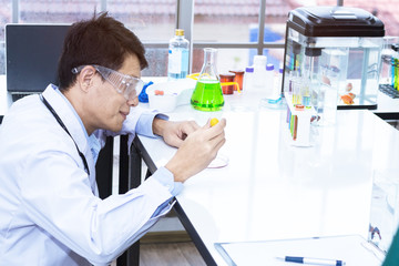 Senior handsome researcher mixing with color test tube.Doctor in white suit and glasses.Copy space.