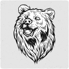 Bear head. Black and white illustration. Isolated on light backgrond with grunge noise and frame.