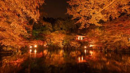 京都府 醍醐寺 紅葉ライトアップ