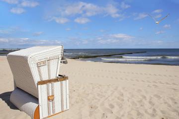 Baltic Sea, Seagull, Strandkorb, Wave