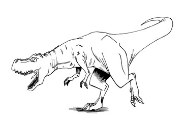 dinosauro tirannosauro rex disegnato a mano