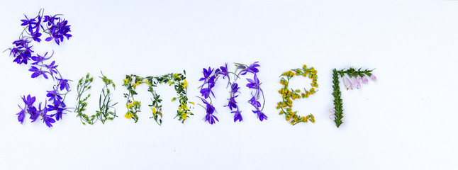 Word SUMMER made of colorful bright flowers and petals on white background. Flat lay. Long horizontal banner