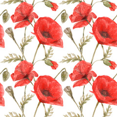 Red Poppy seamless pattern by watercolor