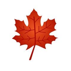 Red maple leaf flat icon isolated on white background. Vector illustration. Leaf symbol.