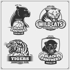 Set of basketball emblems, badges, logos and labels with tiger, panther and wildcat.
