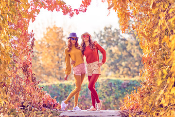 Two Young european Girl Enjoy Nature in Autumn Park. Best friends Walking Relax on Colorful Fall leaves background, Outdoor. Beautiful Woman in Stylish Fashion Outfit, Trendy Sunglasses