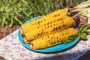 Corn baked in olive oil, with pepper, salt and basil on blue dish