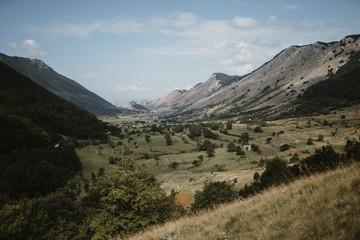 landscapes and naturalistic details
