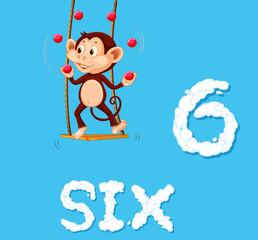Monkey juggling six ball