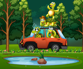 Turtle travel in nature