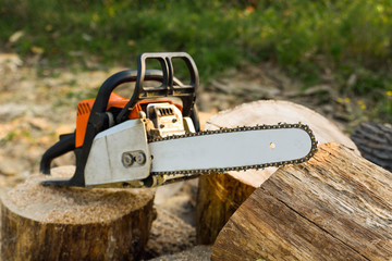 Close-up of woodcutter sawing chain saw in motion, sawdust fly to sides. Concept is to bring down trees. A person using a chainsaw on pretty wood.Woodcutter saws tree with chainsaw on sawmill