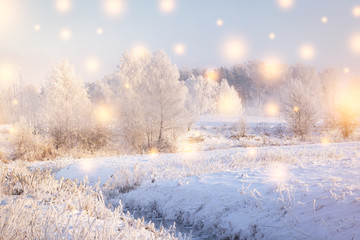 Winter landscape. Christmas Holiday Background with color snowflakes. Magic winter. Sun shine on snowy trees and plants with hoarfrost