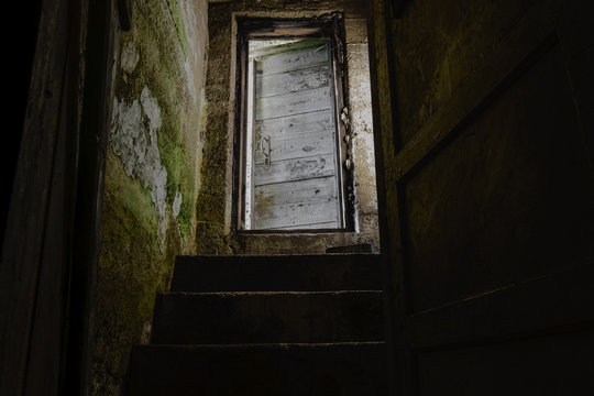 Dark stairs with old and white door leading down to dark basement