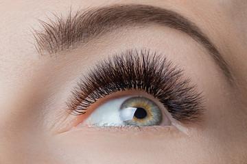 Macro photo female green eye with extreme long black eyelashes