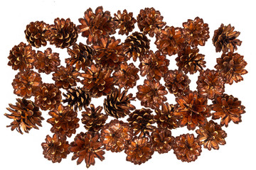 Pine cone. Brown background of cones.