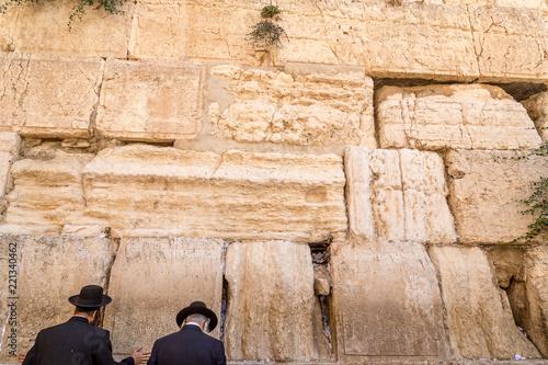 Orthodox jewish men pray at the Wailing Wall