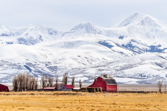 Montana Farm Below Massive Snow Covered Mountains