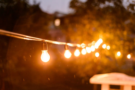 Decorative outdoor string lights hanging on the tree in the back yard at night time close, midges buzzing around on a summer evening
