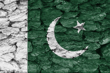Texture of the Flag of Pakistan on a decorative tree bark.