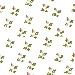 Seamless pattern of pink roses isolated on white background. Spring flower print for wrapping. Floral ornament for valentine postcard. Summer rose seamless pattern