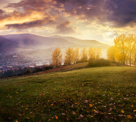 cloudy sunrise in mountains. gorgeous countryside in autumn. trees with yellow foliage on hill and fog down in the valley