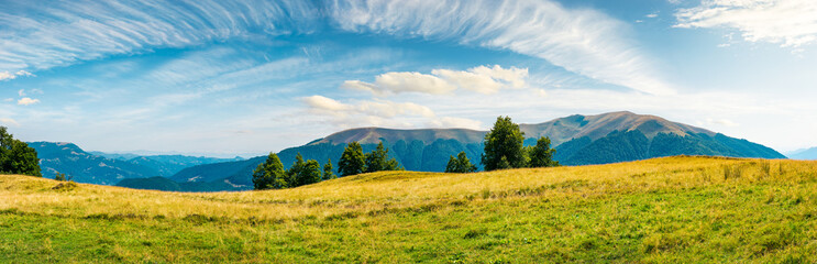 great panorama of mountainous landscape. gorgeous cloudscape above wide grassy meadow. mountain ridge with alpine meadows in the distance. wonderful sunny day and good weather for outdoor activities